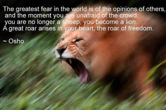 Find the roar of freedom